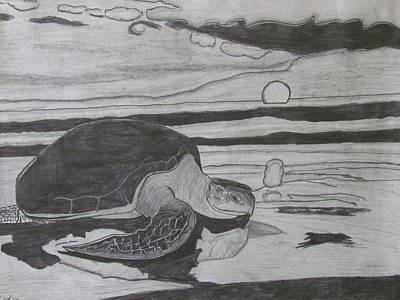Beach Landscape Drawing - Turtle In The Horizon by Duy Tran