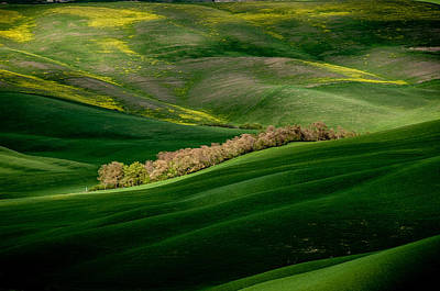 Y120907 Photograph - Tuscan Countryside by Massimo Pelagagge