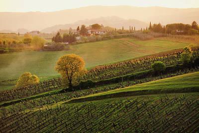 Winemaking Photograph - Tuscan Vinyards by John and Tina Reid