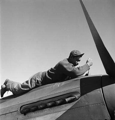Photograph - Tuskegee Airman, 1945 by Granger