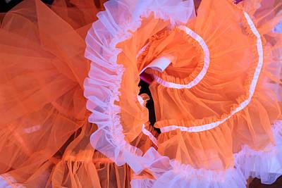 Photograph - Tutu Swirls by Denice Breaux