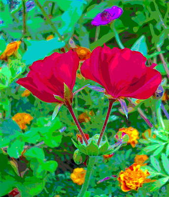 Twin Geraniums With Marigold Flowers Art Print by Padre Art