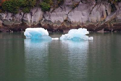 Photograph - Twin Icebergs by Marilyn Wilson