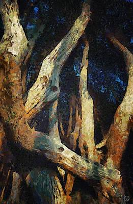 The Trees Digital Art - Twisted by Gun Legler