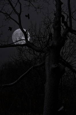 Full Moon Photograph - Twisted Moon by Emily Stauring