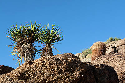 Photograph - Two Bunch Gold Butte by Lorraine Devon Wilke