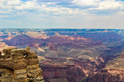 Photograph - Two Crows Watch Over The Canyon by Heidi Smith