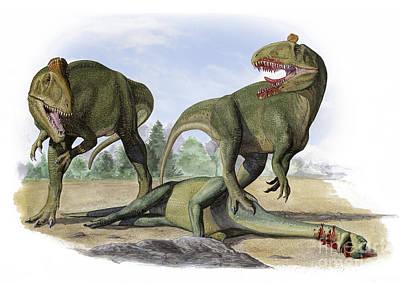 Carcass Digital Art - Two Cryolophosaurus Ellioti Dinosaurs by Sergey Krasovskiy