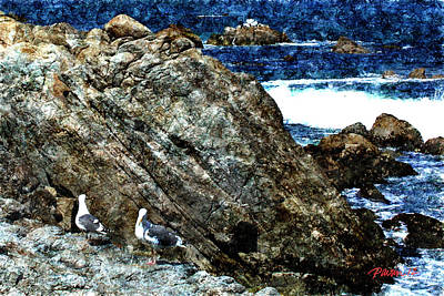 Digital Art - Two Gulls Pacific Grove Ca by Jim Pavelle