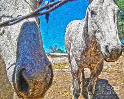 Two Horses Art Print by Gregory Dyer