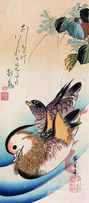 Edo Period Painting - Two Mandarin Ducks by Pg Reproductions