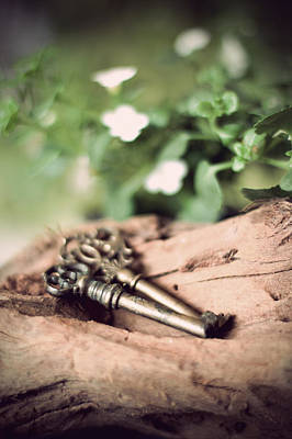 Photograph - Two Mysterious Keys On Log by Ethiriel  Photography