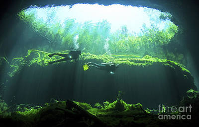 Cenote Photograph - Two Scuba Divers In The Cenote System by Karen Doody