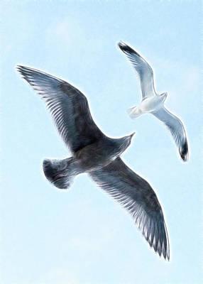 Meditative Digital Art - Two Seagulls by Hakon Soreide