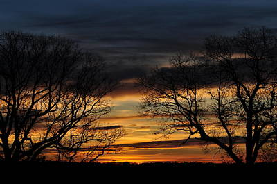 Two Tree Sunrise Art Print by Peter  McIntosh