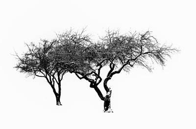 Zen Digital Art - Two Trees by Bill Cannon