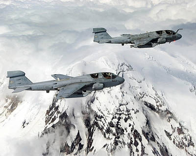 Prowler Photograph - Two Us Navy Ea-6b Prowler Aircraft by Stocktrek Images