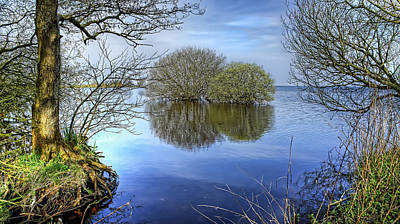 Two Watery Trees  Art Print by Kim Shatwell-Irishphotographer