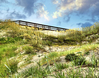 Photograph - Tybee Island Dunes No.2 by Tammy Wetzel