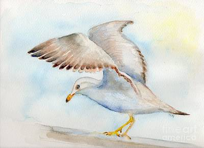 Tybee Seagull Art Print by Doris Blessington