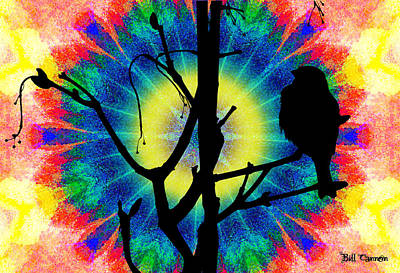 Tye Dye Photograph - Tye Dye Birdie by Bill Cannon