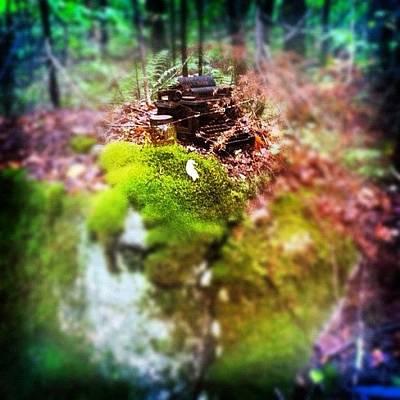 Typewriter Photograph - #typewriter #woods #ink361 #vt #fall by H Mackenzie