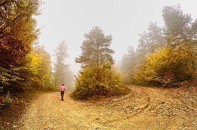 Photograph - U-turn by Okan YILMAZ