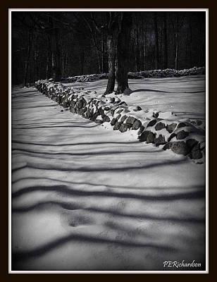 Photograph - Umbrage by Priscilla Richardson