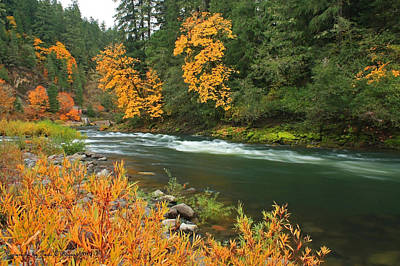 Photograph - Umpqua In The Fall by Tyra  OBryant