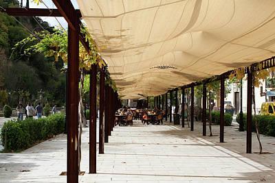 Photograph - Under Billowing Canopy by Lorraine Devon Wilke