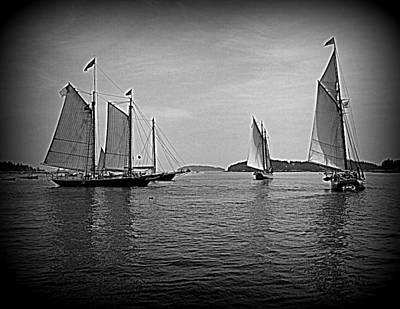 Photograph - Under Sail by Doug Mills