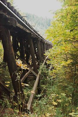 Photograph - Under The Railroad Tracks by Angi Parks