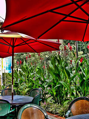 Photograph - Under The Red Umbrella by Colleen Kammerer