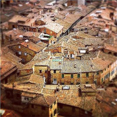 Skyline Wall Art - Photograph - Under The Tuscan Sun.. #siena #rooftops by A Rey