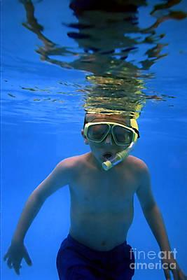 Photograph - Underwater 1 by Susan Stevenson