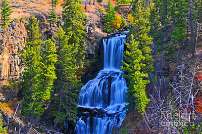 Photograph - Undine Falls Yellowstone National Park  by Schwartz Nature Images