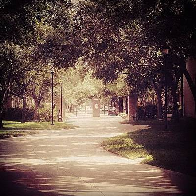 Pathway Photograph - University Campus by Austin Stewart