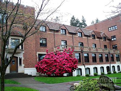 Architecture Photograph - University Of Puget Sound Campus   2 by Tanya  Searcy