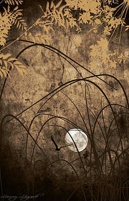 Abstract Moon Photograph - Unseen by Lourry Legarde