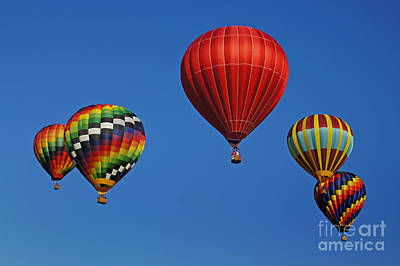 Photograph - Up Up And Away by Benanne Stiens