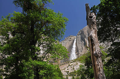 Photograph - Upper Yosemite Falls by Lynn Bauer
