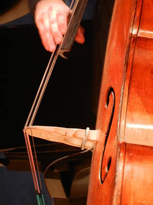 Photograph - Upright Bass 1 by Anita Burgermeister
