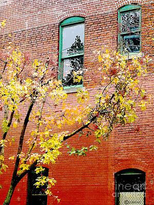 Photograph - Urban Brick by Lizi Beard-Ward