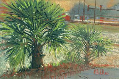 Pastel Landscape Painting - Urban Palms by Donald Maier
