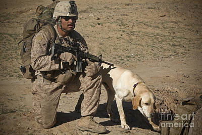 Photograph - U.s. Marine Provides Security by Stocktrek Images