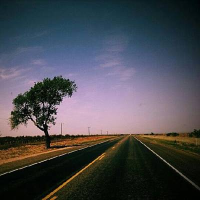 #usa #america #road #tree #sky Art Print