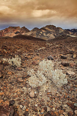 Y120907 Photograph - Usa, California, Death Valley, Barren Landscape by Bryan Mullennix
