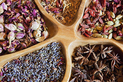 Y120907 Photograph - Usa, Washington, Battle Ground, Close-up Of Dried Flowers by Bryan Mullennix