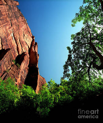 Photograph - Utah - Angels Landing by Terry Elniski