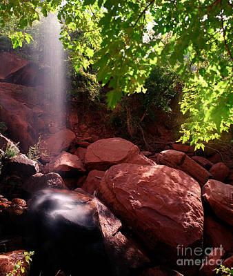 Aretha Franklin - Utah - Emerald Pool Boulders 2 by Terry Elniski